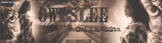 Header -Owlslee